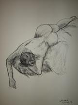 Sketch LA5795