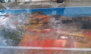 2015 Alpine Artwalk Chalk Art, As the rain came down, Lilibeth Andre,